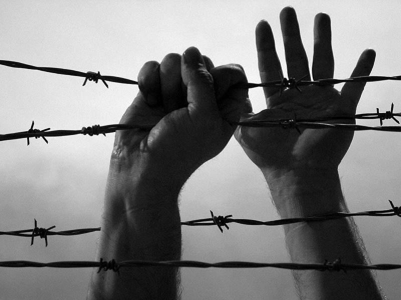 Волгин: Свободата ще бъде окончателно погребана