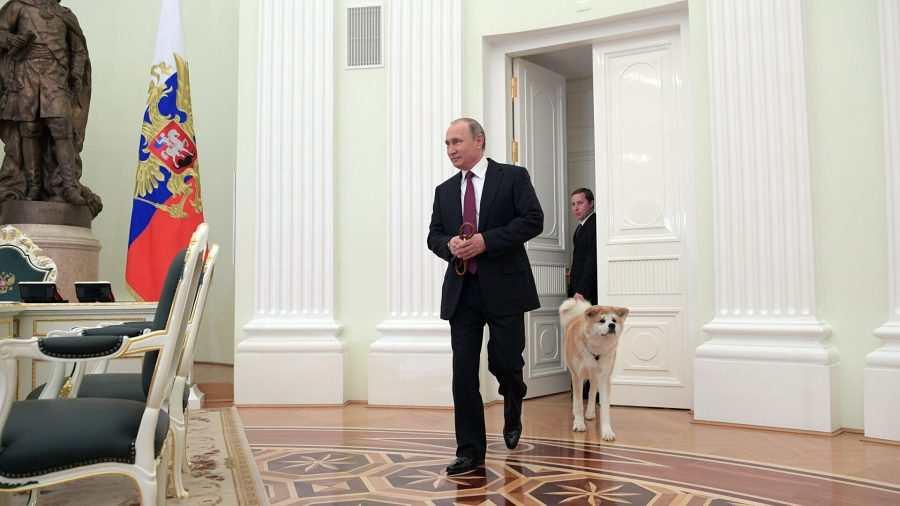 Експерт: Червените линии на Путин може да минават през Париж или Ню Йорк