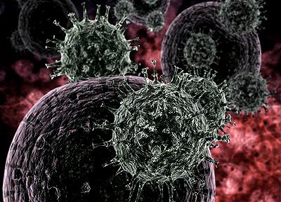 Еволюция и произход на вирусите