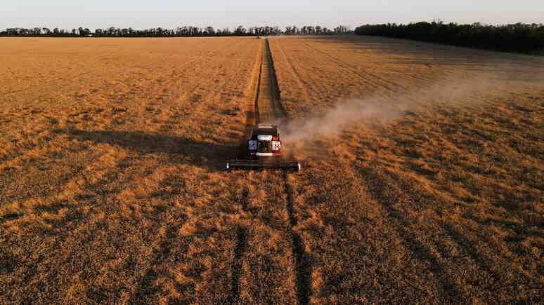 Marianne: Сибирската житница - глобалното затопляне ще позволи на Русия да се укрепи на пазара на пшеницата