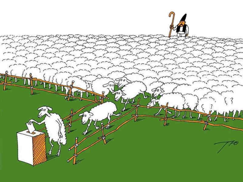 """Политическите """"бройлери"""": """"Леви, десни, леви, десни, ще вървим напред!"""""""